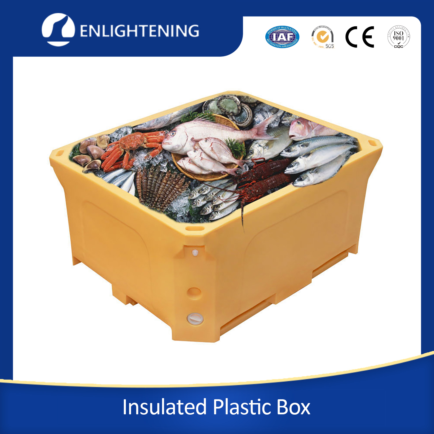 Heavy Duty Food Grade Seafood Cold Room Use Insulated Plastic Box
